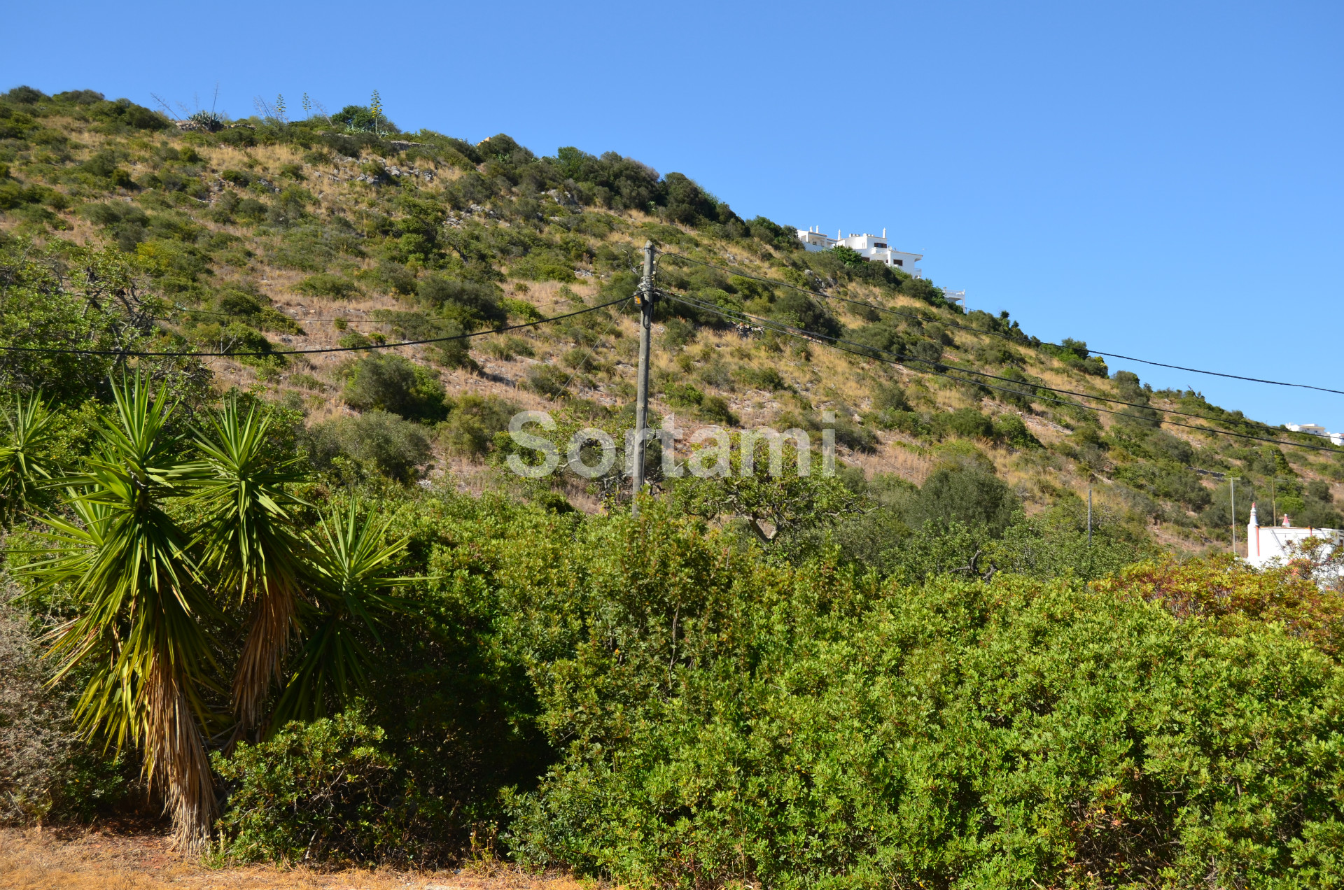 , Algarve, Albufeira