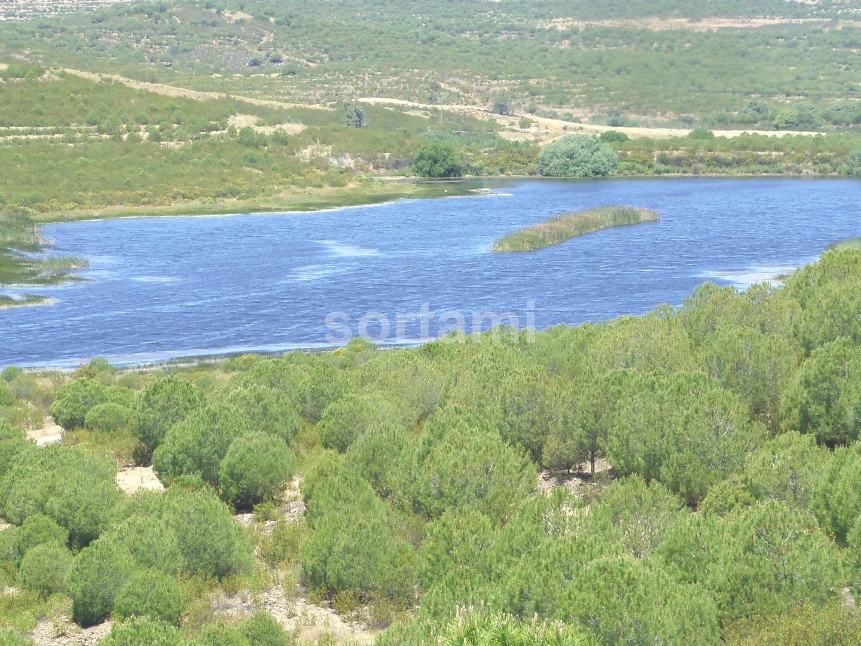 Rustic Land  Alentejo, Beja