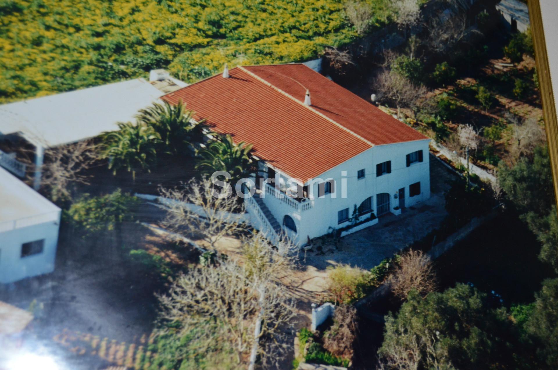 Rustic Land  Algarve, São Bartolomeu de Messines