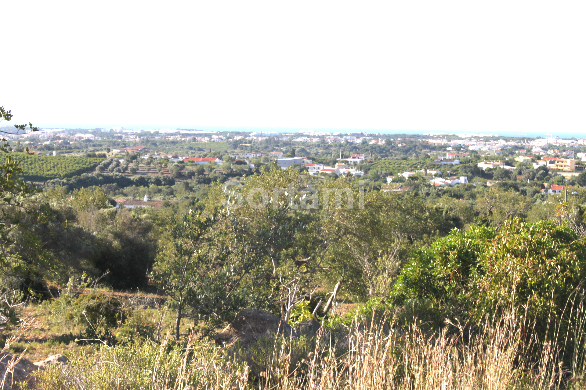 Plot , Algarve, Patã